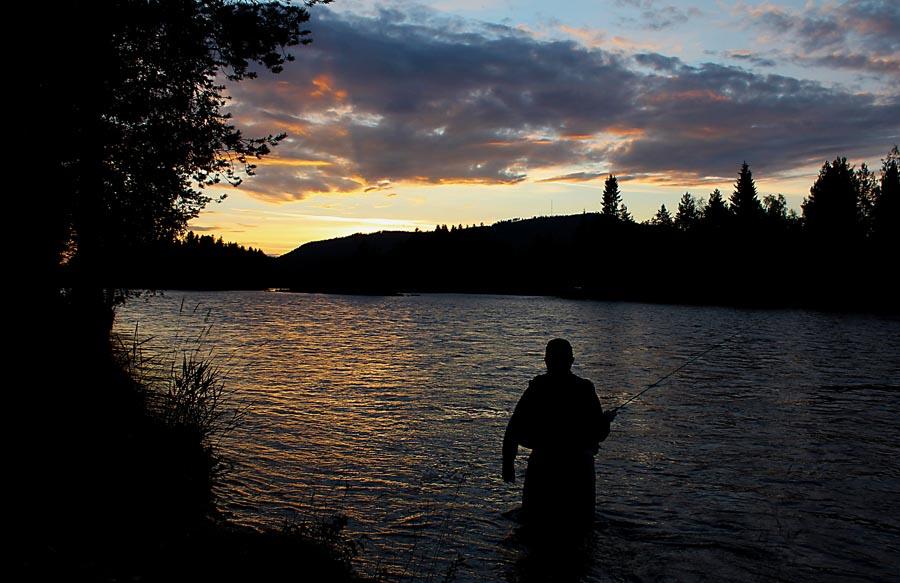 Fiskekort i Älvdalen, Dalarna | Älvdalen Fiske