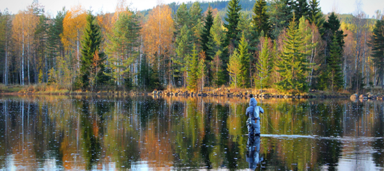 Kurser i flugfiske i Dalarna