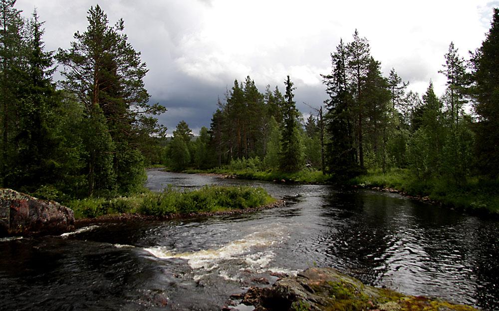 Fiske i Dalarna, Älvdalen Fiske - Österdalälven