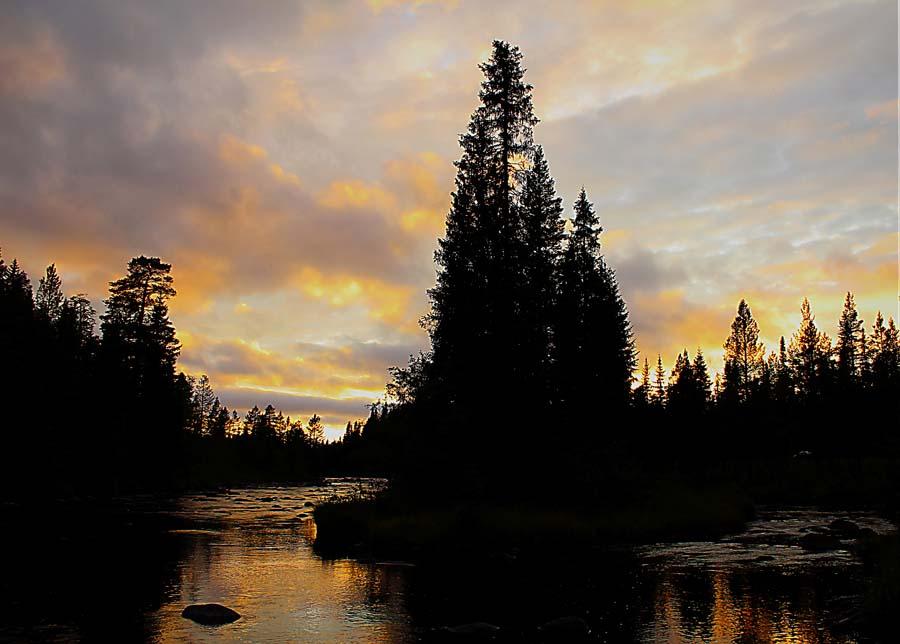 Rotälven i Dalarna | Älvdalen Fiske